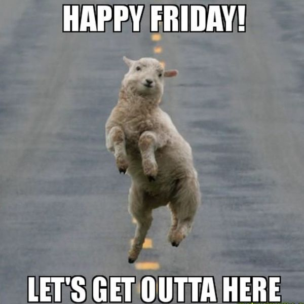 Happy friday lets get outta here