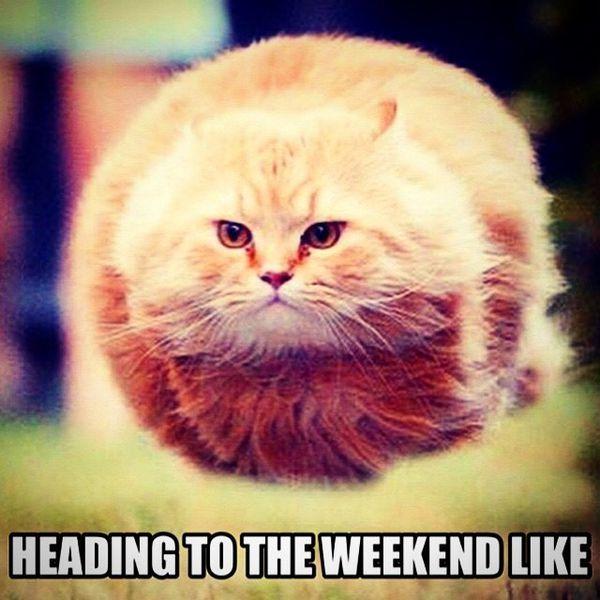 Heading to the weekend like