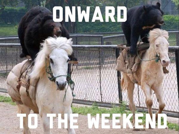 Onward to the weekend