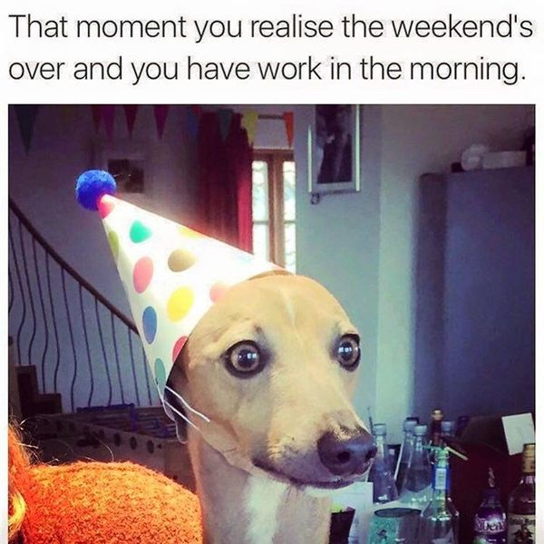 That moment you realise the weekends over