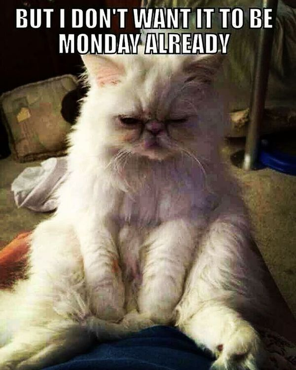 but i dont wan it to be monday already