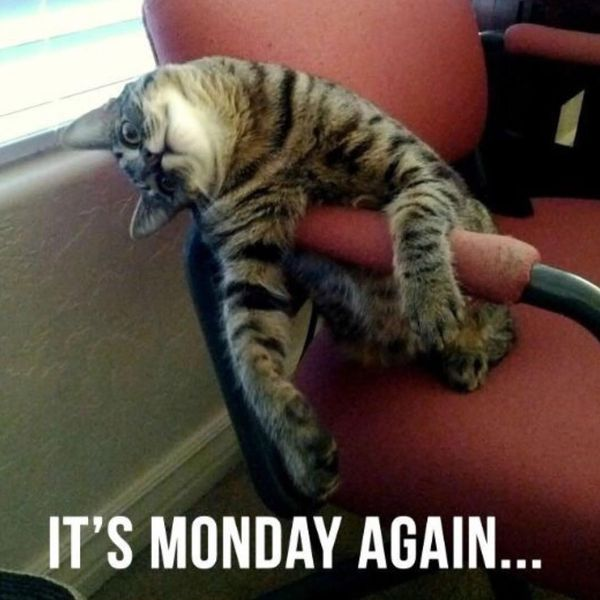 its monday again