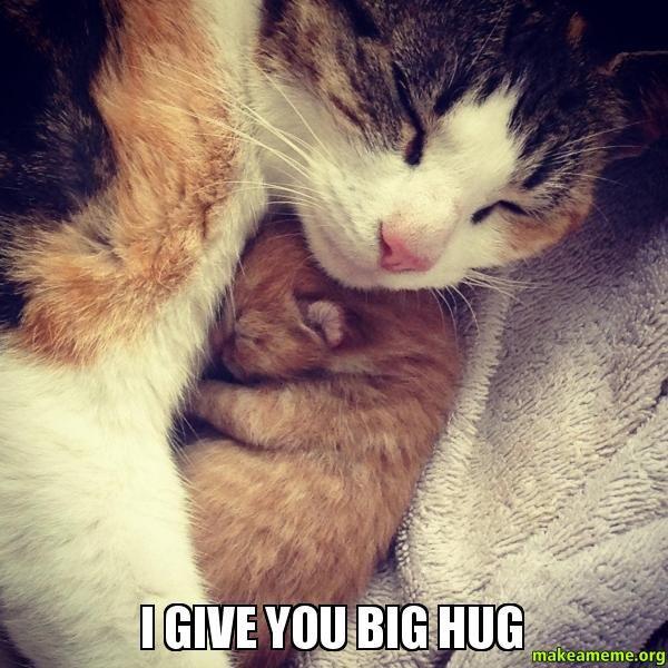 Superior big hug meme
