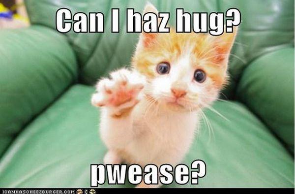 Excellent cute hug meme