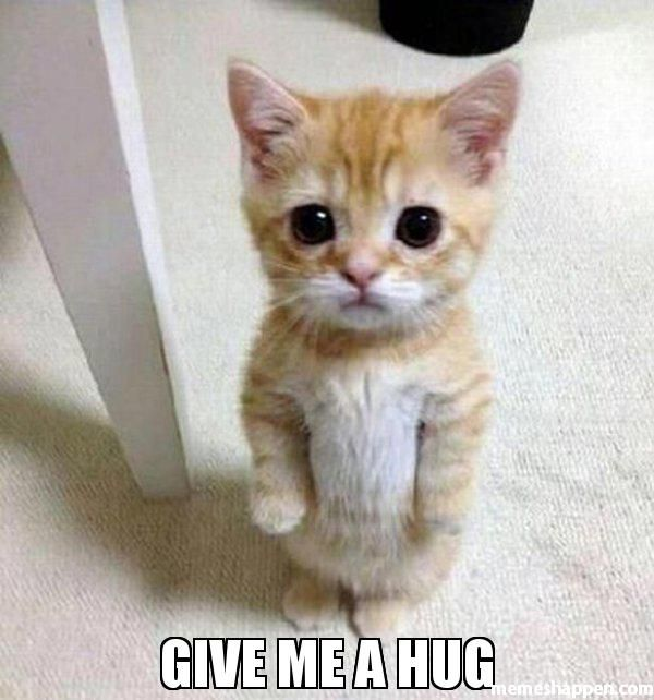 Amazing give me a hug meme