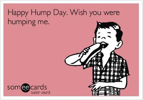 Free Hump Day Cartoon Meme 2
