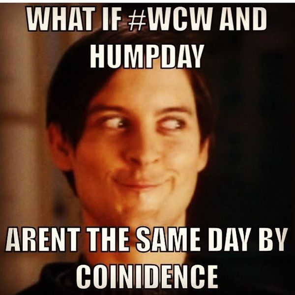 Hump Day Meme Dirty yet Funny 1