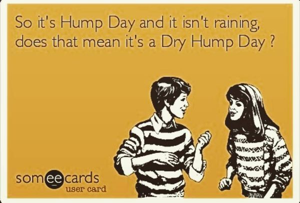 The Funniest Hump Day Images and Quotes 3