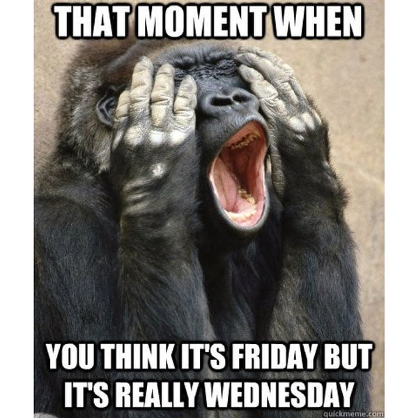 Funny Memes about Wednesday 2
