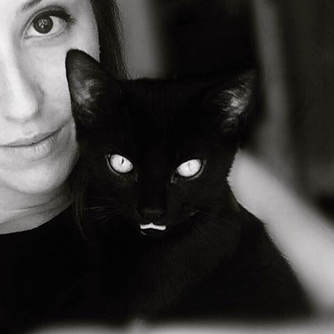 ravishing black cat