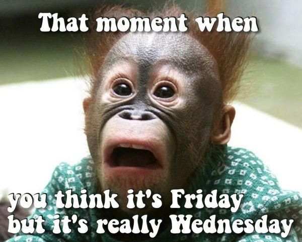 Funny Memes about Wednesday 3