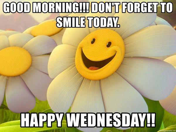 Cool Wednesday Morning Meme 2