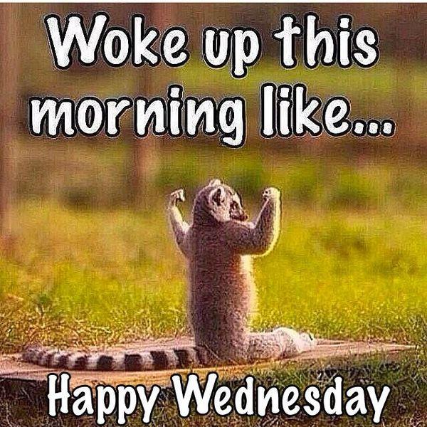 Cool Wednesday Morning Meme 3