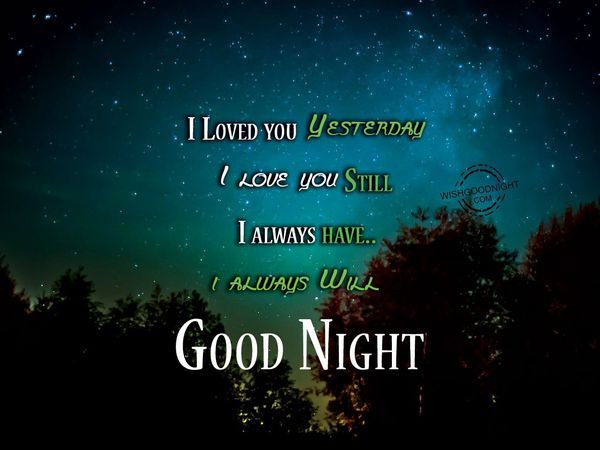 Cute and Sweet Goodnight Memes for Her 4