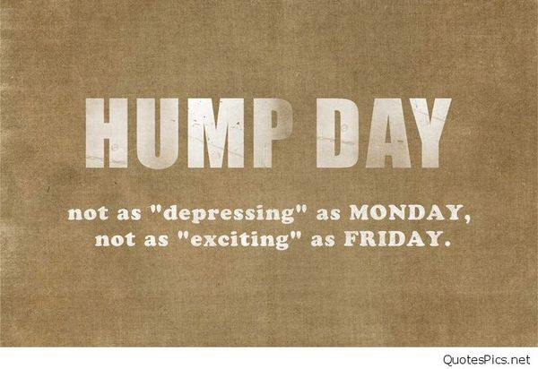 Funny Wednesday Images with Quotes to Wish A Happy Wednesday 1