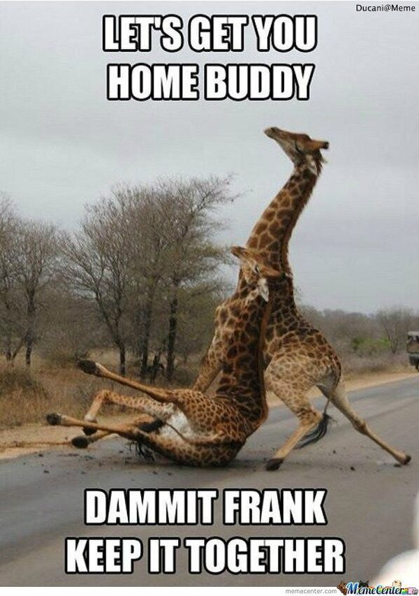 Hilarious Saturday Night Meme 2