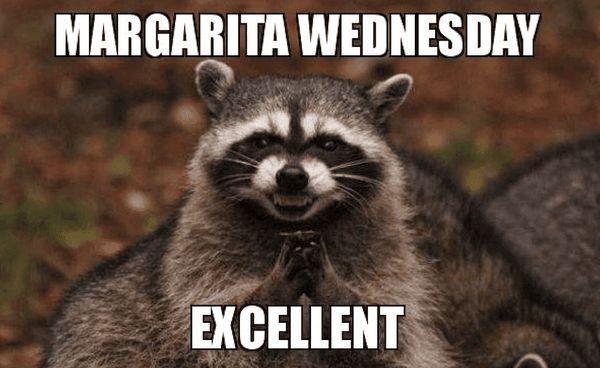 Hilarious Wednesday Work Meme 5