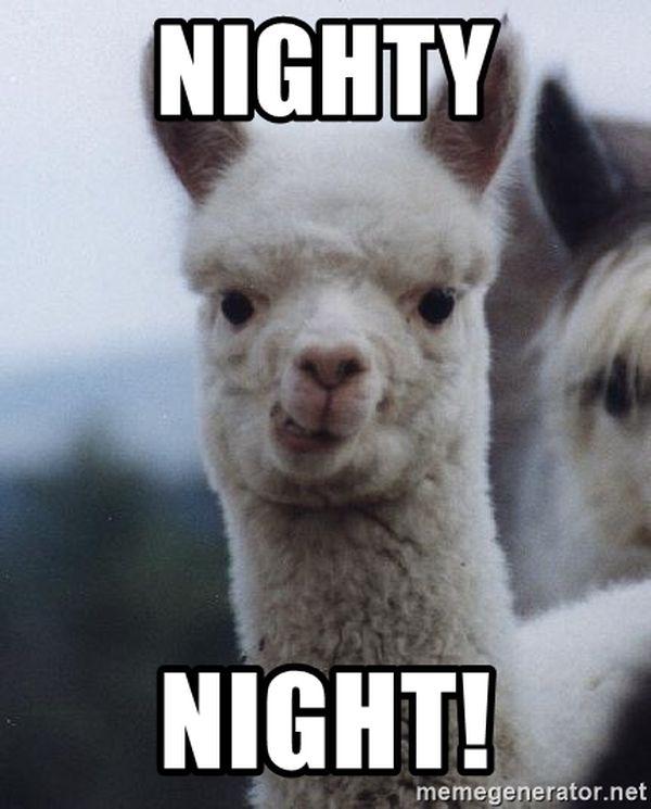 Humorous Nighty Night Meme 3