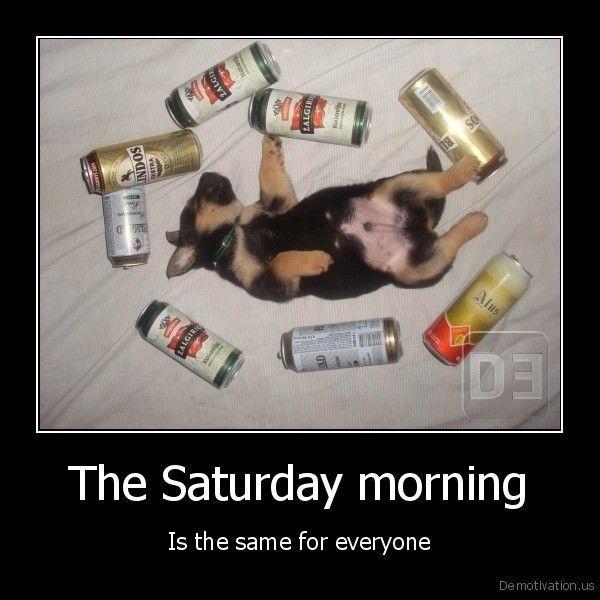 Pics With Saturday Humor and Saturday Jokes 5