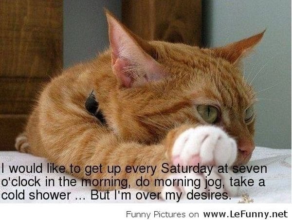 The Best Saturday Funny Images 1
