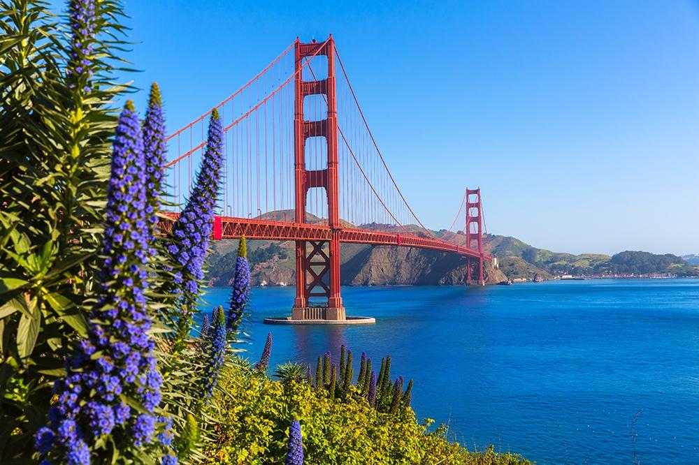 San Francisco Captions