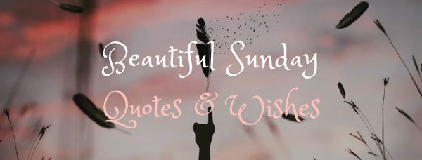 Beautiful Sunday Quotes & Wishes