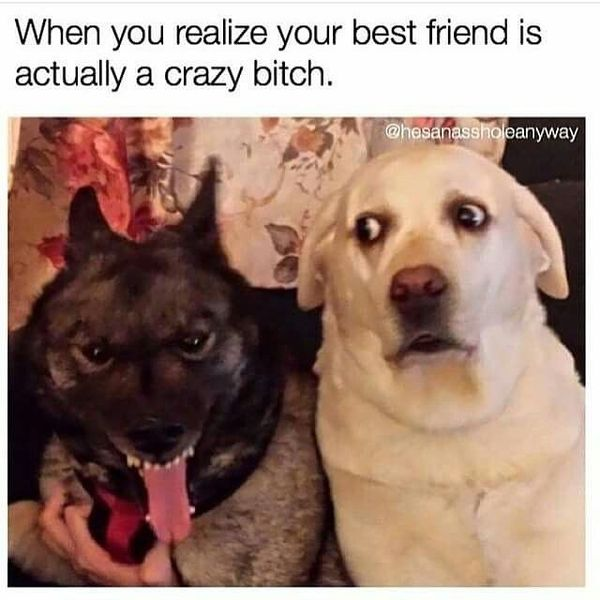 When you realize your best friend is actually a crazy bitch